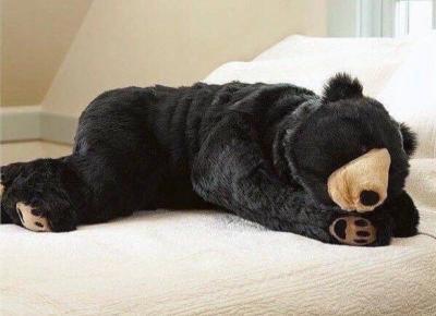 Niedźwiedzi śpiwór warty prawie 10 tysięcy złoty!