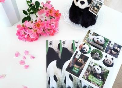 🐼 Pomóż WWF! 🐼 Adopcja pandy wielkiej 🐼🐼🐼