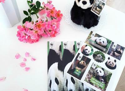 pastelowyblog.pl: Adopcja pandy wielkiej | Pomagaj z WWF