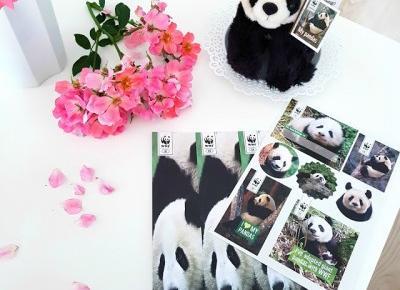 pastelowyblog.pl: Adoptowałam pandy wielkie z gór Qinling w Chinach! | Pomagaj z WWF