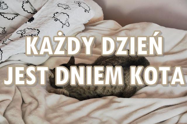 Paulina Bagińska: Każdy dzień jest Dniem Kota