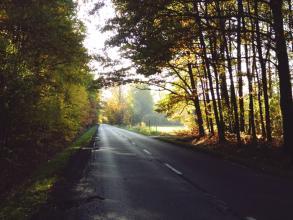 Bakusiowe Bzdetki: Osiemnasta jesień w moim życiu