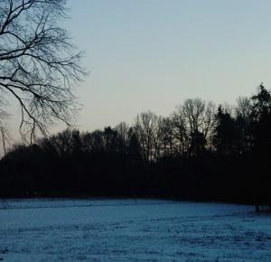 Bakusiowe Bzdetki: Spadł śnieg