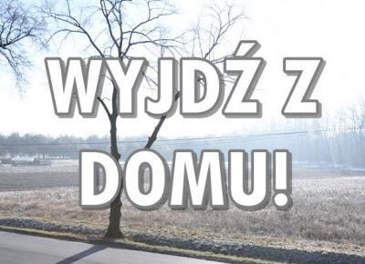 Paulina Bagińska: Wyjdź z domu!
