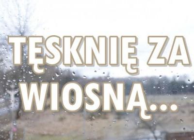 Paulina Bagińska: Tęsknię za wiosną...