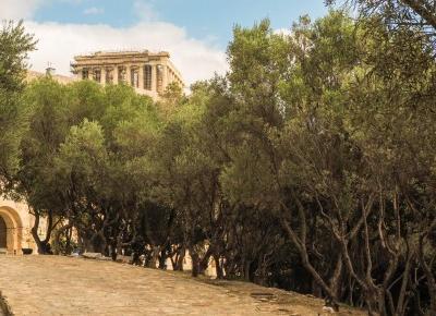 Akropol – Para Side