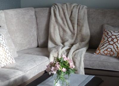 Nowa kanapa inspiracją do remontu salonu.
