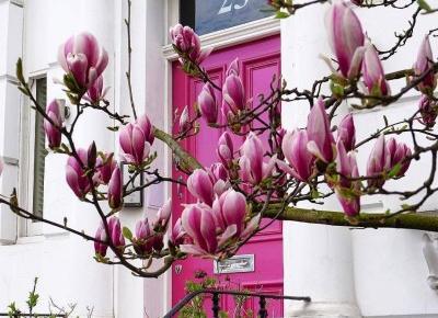 Drzwi wejściowe zewnętrzne, wizytówka domu, mieszkania.