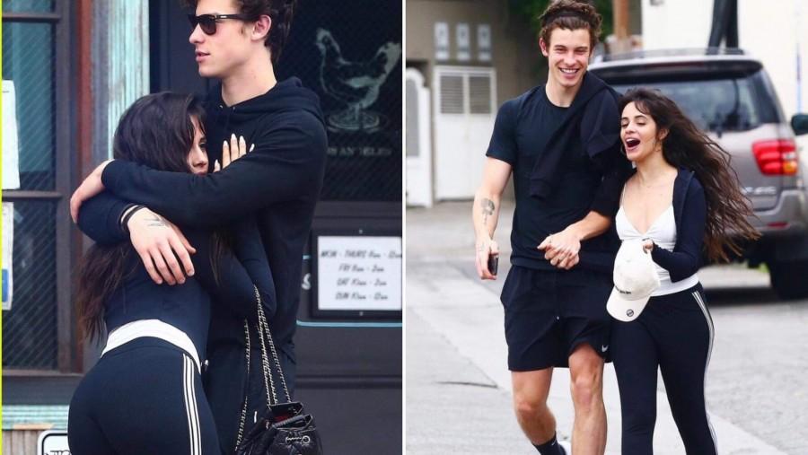 Shawn Mendes i Camila Cabello - co ich łączy?