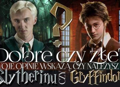 Dobre czy złe? Twoje opinie wskażą, czy należysz do Slytherinu czy Gryffindoru!