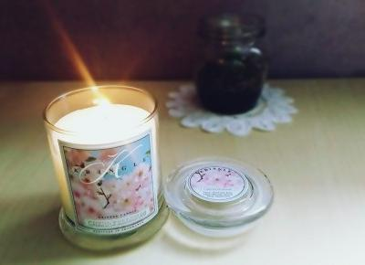 Kwiat wiśni | kringle candle | PAULINOOWO