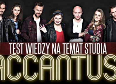 Test wiedzy na temat studia Accantus!