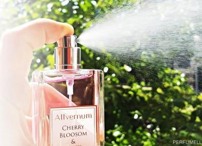 Perfumy Allverne Cherry Blossom & Musk (recenzja) | Perfumella blog o perfumach i kosmetykach