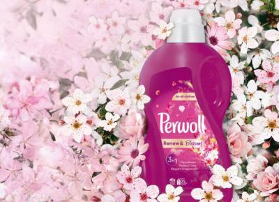 Perwoll Renew & Blossom Recenzja płynu do prania