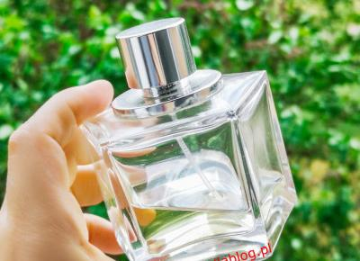 Celine Dion Belong Recenzja Damskich Perfum