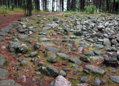 Szlak Kamiennych Kręgów - Szlaki online