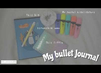 my bullet journal ✰