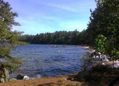 Camp w Maine czyli jak podreptałam za ocean