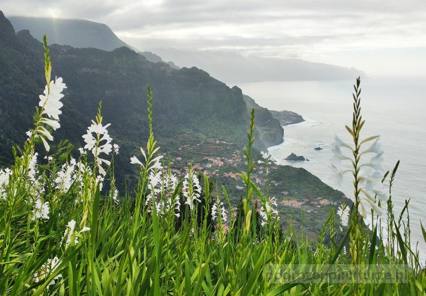 Madera: Czy warto jechać na Maderę? Zobacz te zdjęcia, by się przekonać!