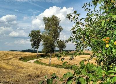 Skręć w drogę bez nazwy: odkrywamy ziemię lubawską!