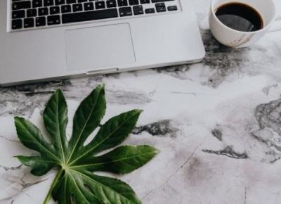 Jak rozwinąć fanpage bez płatnej reklamy - 13 porad nie tylko dla blogera