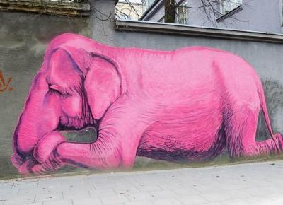 Kowno - street art i porwanie przez kolejkę linową