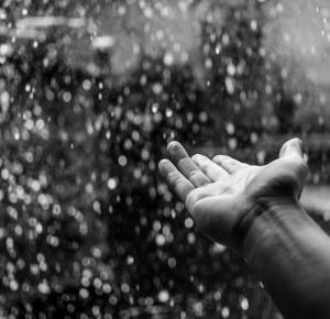 KAKTUSOWY SAD: Top 10 piosenek na deszczowe dni