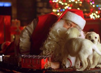 Magia Świąt Bożego Narodzenia - jak ją odzyskać i komuś podarować?