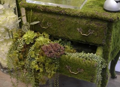 jak przerobić stare meble w zielony żywy przedmiot?