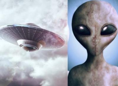 KALENDARZ ŚWIĄT NIETYPOWYCH - DZIEŃ UFO, DZIEŃ HOT-DOGA?