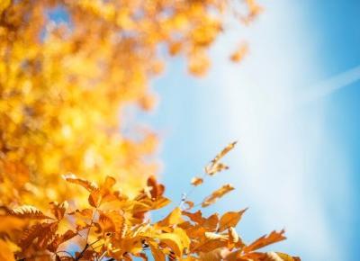 Bling Bling MakeUp: Witam Cię piękna Jesieni! bądź dla mnie przyjemna...