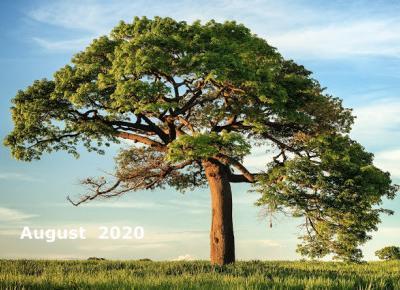 Bling Bling MakeUp: Inspiracje Sierpnia 2020