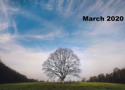 Bling Bling MakeUp: Inspiracje Marca 2020