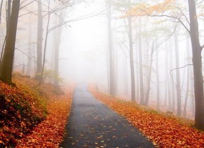 Bling Bling MakeUp: Jesienna matowa tęcza...