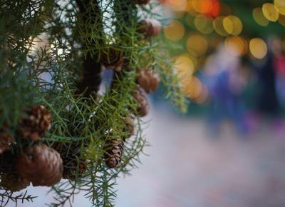 Bling Bling MakeUp: ❅ ❅ ❅ Wesołych Świąt ❅ ❅ ❅