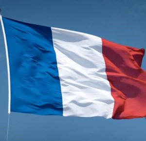 Zamach w Paryżu to wina uchodźców! | Flegmatycznie