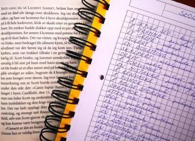 Czasem warto rzucić się na głęboką wodę – o książkach obcojęzycznych słów kilka – MARIONETKA LITERACKA