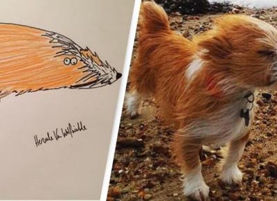 Śmieszne rysunki artysty z Insta dały mu popularność!