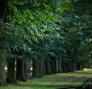 Polska nieznana – 5 miejsc na idealny wypoczynek