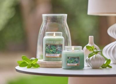 Nowe woski Yankee candle, chyba poczułam do nich miętę! :) | SmellLikeMe.pl