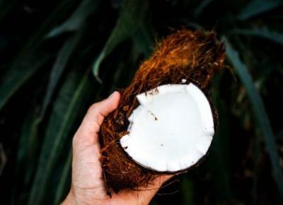 4 niesamowite zastosowania oleju kokosowego - My Fit Planet