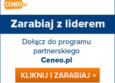 Jak zarabiać na blogu? Program partnerski Ceneo.pl - zarobki większe niż w AdSense?!