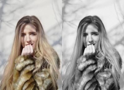Monika Michalik: FUTERKO