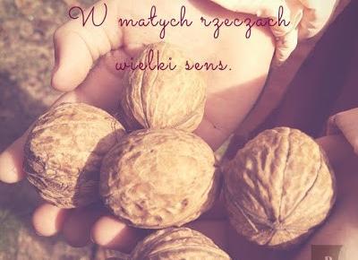 Domek dla mrówek - Autumn's monologue. - sweetlittlebunny