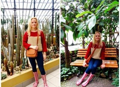 Palmiarnia w Gliwicach - gwarancja udanego weekendu - Świat w kolorze blond