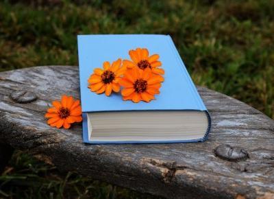 Błękitna książeczka - Waleria Marrene
