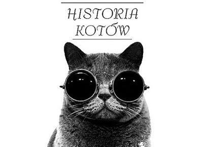 Historia kotów - Madeline Swan | Czytam, polecam...