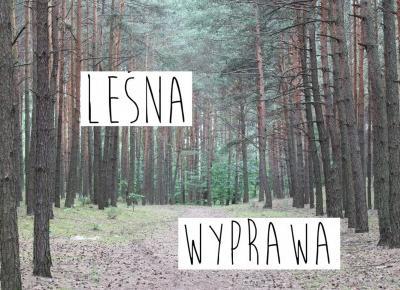#63 LEŚNA WYPRAWA