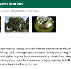 Podróże Dwóch Włóczykijów  ~  Two Gadabouts' Journeys: Głosujemy na polski dąb Bolko w konkursie Europejskie Drzewo Roku 2016! :)