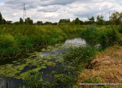 Słowianie, Wikingowie i rzeka, czyli I Dzień Muchawki - nasze wrażenia [The first Muchawka River Day - our impressions]
